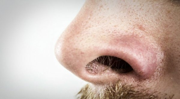 Nesehårtrimmer test 2019 – Hold snuten ryddig med en av disse